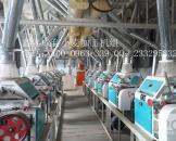 日处理小麦40吨面粉加工设备