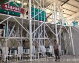 山西晋城60吨面粉加工设备