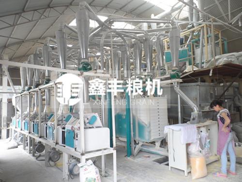 玉米黄金粉加工设备