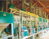 日处理20-30吨面粉加工成套设备