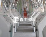 河北邯郸馆120吨面粉机组