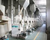 燕麦制米设备